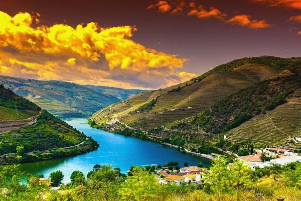 Reis i River Douro-regionen i Portugal blant vingårder og olivenlunder. Vinbruk i de portugisiske landsbyene ved soloppgang