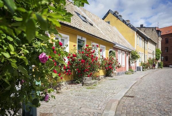 Sjarmerende bygate i Lund med fargerike hus og blomster