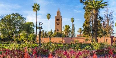 Utsikt over Koutoubia-moskeen og gardem i Marrakesh, Marokko. Blomsterrik hage med moskeen i bakgrunn