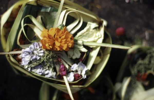 Indonesia, Bali, Ubud, canang sari som tilbyr brett.