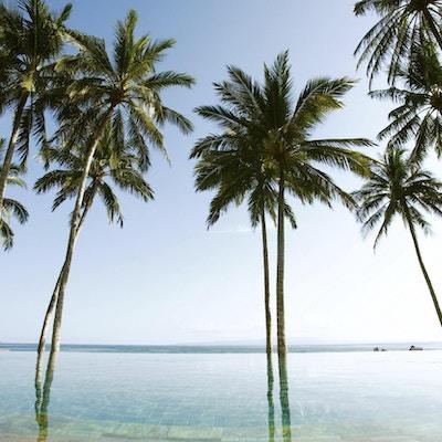 Svømmebasseng ved tropisk strand
