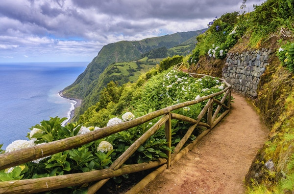 Tursti langs hydragenia og dramatisk landskap nær Nordeste, Sao Miguel (Azorene)