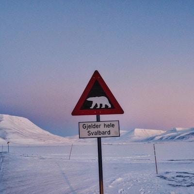 På tur på Svalbard