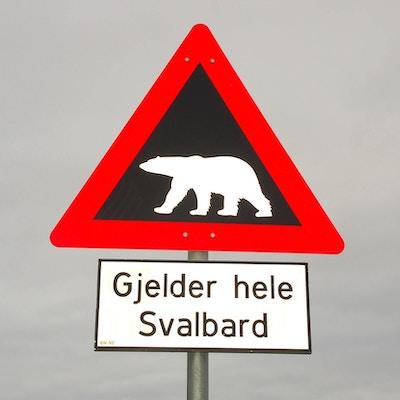 Isbjørnfare