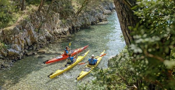 Tre mannlige padlere som padler sammen på havet.