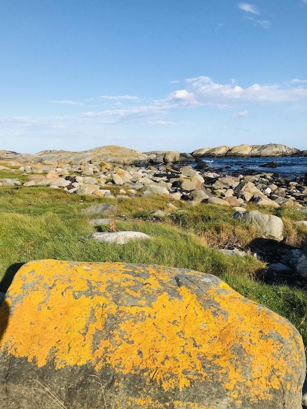 Stein med mose står foran gress og steiner som ligger foran sjøen