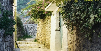 Smal, brosteinsbelagt gate med busker og trær i himling og inngangsdører langs veggen