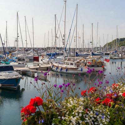 Havnen med båter og vakre blomster