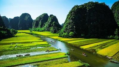 Risfelt og elv, NinhBinh, Vietnam-landskap