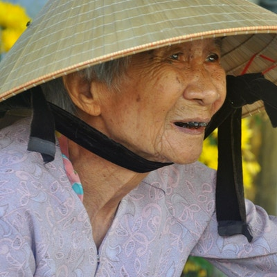 Vietnamesisk dame