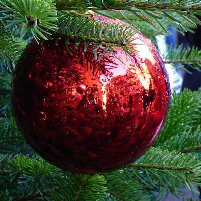 Julekule i et juletre