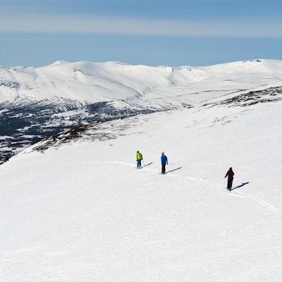 Fire personer, sett ovenfra, som er ute og går på ski i fjellet med sekk