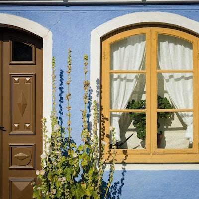 Hus med brun dør, pastellblå husfarge med gul vinduskarm og en stor plante utenfor