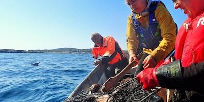 Tre personer ute på fiske om bord i fiskeskøyte med garn