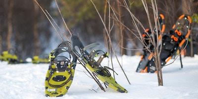 Et par gule og svarte truger står lent mot en busk på bakken dekket av snø. I bakgrunnen står et par truger som er svarte og oransje