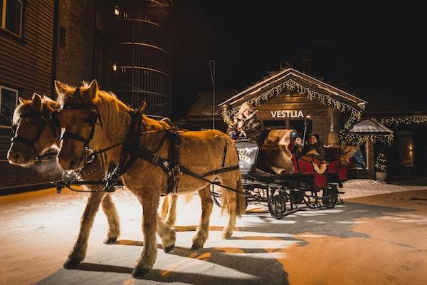 To hester med tykk vinterpels er salet opp med seletøy foran en vogn med skinnfeller og mennesker i