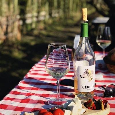 Uka farm wine albania