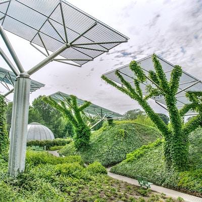 Hagen på universitetets takterrasse