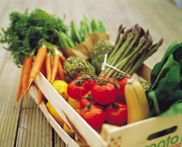 Kurv med grønnsaker og frukt