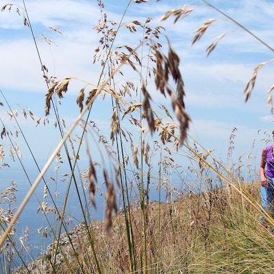 Italia Sorrento Sorrentohiking Vandring Punta Della Campanella