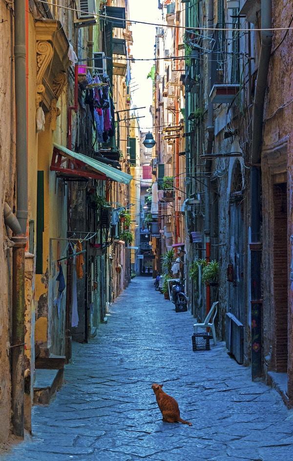 Istock 98655773 Napoli Campania Italia