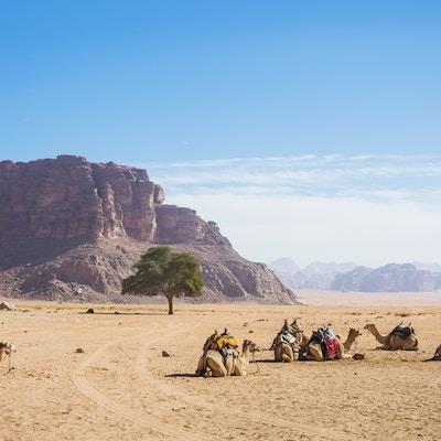 Getty Images 943993120 Jordan Wadi rum 1
