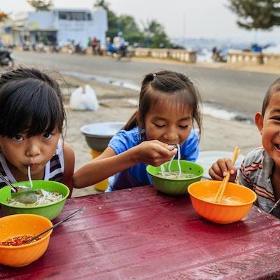 Getty Images 862472420 Vietnam barn mat