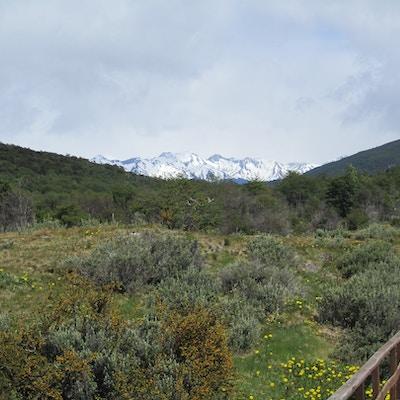 Tierra del Fuego3