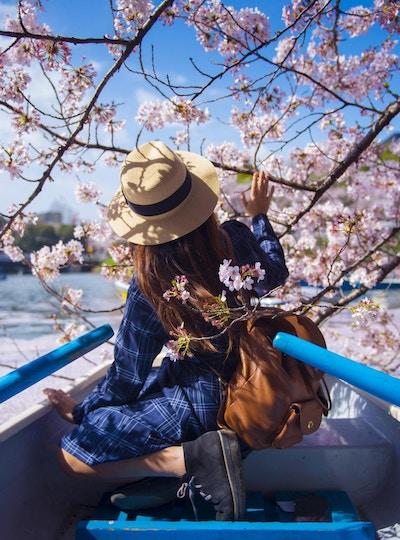 Asiatisk kvinne liker å reise i Japan i løpet av vårsesongen.