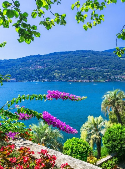 vakre blomsterhager i Lago Maggiore